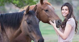 Ratgeber: Pferdegesundheit und KPU