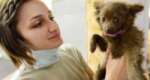 Tierarzt Griesheim - Tierarztpraxis für Tiermedizin- Notdienst & Sprechzeiten